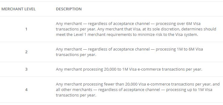 visa pci levels