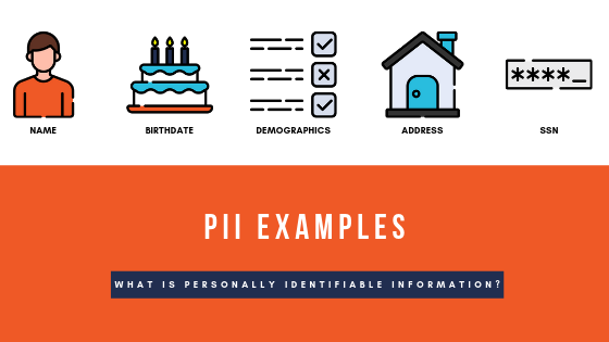 Train - PII Examples